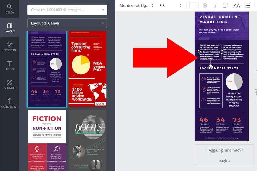 infografica canva esempio